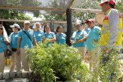 CONSOL capacita a madres comunitarias de Pelaya sobre el cuidado del medio ambiente