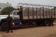 Décima brigada blindada presenta resultados positivos en contra del abigeato y el contrabando de ganado