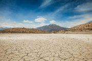 Calentamiento global: los últimos 4 años fueron los más cálidos registrados en la historia