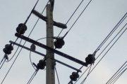 Impactó de ave provocó interrupción de energía eléctrica en Valledupar