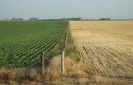 Minagricultura invita a productores a no descuidar medidas de mitigación y prevención por variaciones climáticas