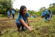 BanAgrario y Gran Tierra Energy sellan alianza para generación de crédito a comunidades en zonas de influencia de la petrolera