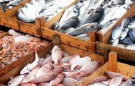 Las alertas sobre la comercialización de pescado en Semana Santa