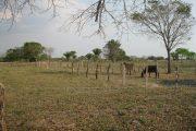 La URT atenderá las solicitudes faltantes que están relacionadas con tierras de La Gloria (Cesar)