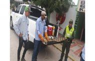 Policía rescató babilla en El Paso, Cesar