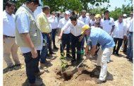 Con diversa programación, se conmemorará el Día Mundial del Medio Ambiente en el Cesar