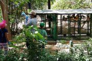 Centro de Fauna de Corpocesar, visitado por niños para conocer la experiencia