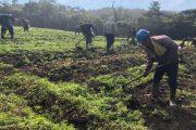 Productores agropecuarios del sur de Cesar conocerán líneas de crédito que les favorecen