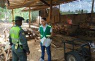 El control que hace Corpocesar al tráfico ilegal de madera