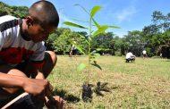 Programa de Clubes Defensores del Agua cerrará el año con plantación de mil árboles