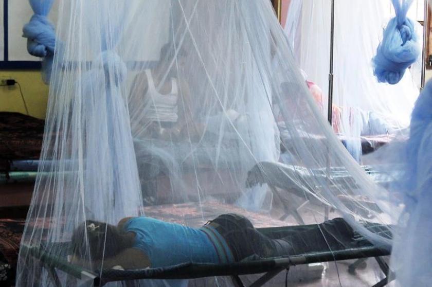 La UE destina casi 109.000 dólares a los afectados por el dengue en Colombia