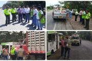 Cerca de 15 mil vehículos con material vegetal han sido inspeccionados y desinfectados para evitar la propagación del Fusarium R4T