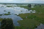 Declaran más 140 mil hectáreas de área protegida en la ciénaga de Zapatosa