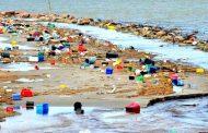 Un plato de plástico: visualizando los microplásticos que consumimos