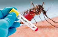 En Colombia se intensifican acciones de prevención frente a casos de dengue en el país