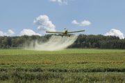Procuraduría hizo reparos al proyecto de reanudación de aspersiones aéreas con glifosato