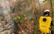 Ejército Nacional trabaja para mitigar las llamas en Mate Caña