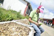 En Chimichagua activarán primera Zona Digital Urbana del Cesar