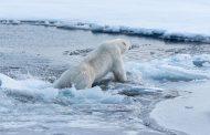 Los estados de la UE piden un plan climático para el 2030 antes de la cumbre de la ONU