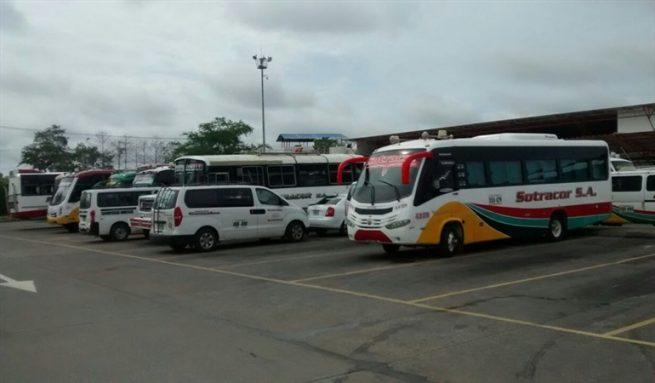 Servicio público de transporte ha seguido operando, bajo lineamientos