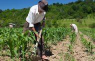 Procuraduría mediará por diálogo con campesinos para la protección de la tierra y el territorio