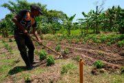 """Abierta el """"Campo Emprende"""", para beneficiar a más de 9 mil familias vulnerables"""