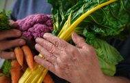 Cinco recomendaciones nutricionales para cuidar a los adultos mayores