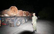 Decomisan cerca de 50 metros cúbicos de madera ilegal en zona rural de Valledupar