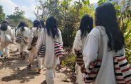 Urgen acciones para garantizar la vida y supervivencia de pueblos étnicos ante la llegada a los resguardos del Covid-19