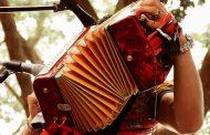 22 acordeoneros profesionales se inscribieron para el 53° Festival de la Leyenda Vallenata Virtual