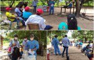 Productores del Cesar aprenden sobre el control del picudo en la palma de aceite