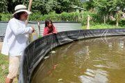 Con asesoría del Sena, comunidad Wiwa cultiva peces como alternativa alimentaria