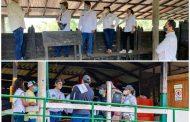 Colombia trabaja en la reapertura del mercado peruano para bovinos y porcinos