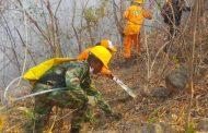 Las recomendaciones de la Defensa Civil para evitar incendios forestales en el Cesar