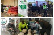 Más de $ 473 millones en productos agropecuarios fueron decomisados por las autoridades