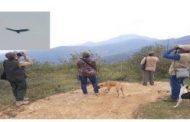 Asi fue el avistamiento de cóndores de los andes en La guajira