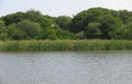 Un llamado para la protección de la laguna Salá en La Guajira