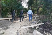 Corpocesar detuvo tala ilegal en el municipio de La Gloria (Cesar)
