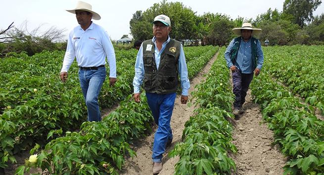 Funcionarios del ICA en San Juan del Cesar recibieron capacitación en visitas y seguimiento a predios