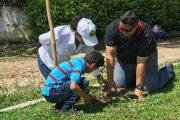 En cuatro localidades del Cesar, plantados más de mil árboles