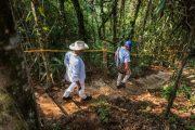 Excombatientes de las Farc se formarán como guías turísticos