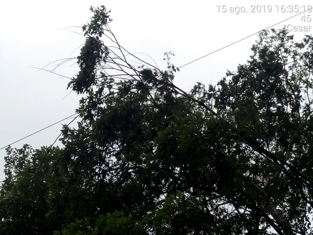 Vendaval afectó servicio de energía en varios municipios del Cesar