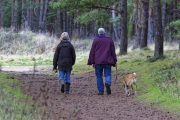 La velocidad a la que caminas podría indicar qué tan rápido envejeces