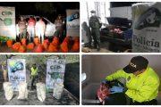 Autoridades dan un nuevo golpe al contrabando agropecuario en zonas de frontera