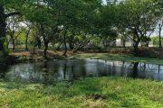 Defensa de los cuerpos de agua en el Departamento, el compromiso del director de Corpocesar
