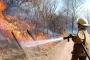 Director de Corpocesar llama la atención para evitar incendios forestales