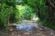 Abierta licitación para mejorar el tramo la Gran Vía-Monte Cristo, zona rural de Valledupar