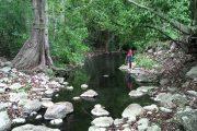 Desviación del cauce del Arroyo Bruno, en La Guajira, afectaría derechos a la salud, al agua y la seguridad alimentaria