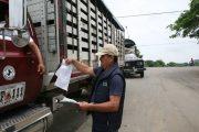 El ICA invita a los ganaderos a expedir sus guías de movilización animal vía web