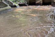 Por causa de turbiedades se disminuye presión de agua en Valledupar